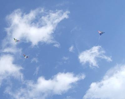作った凧を揚げる