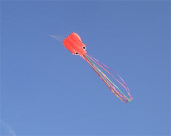 中国製 タコの凧