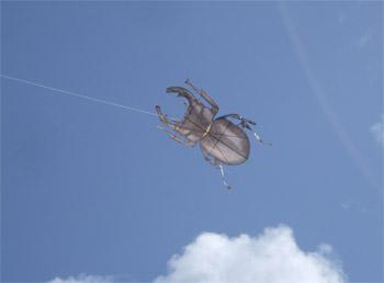 カブトムシの凧