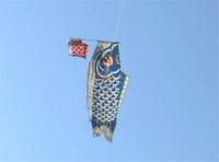 非対称の凧