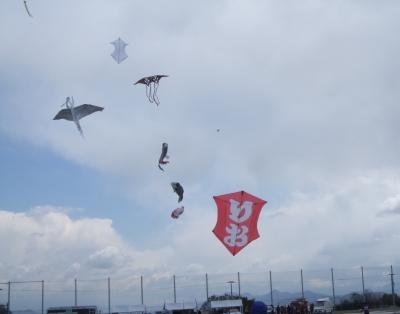 いろいろな凧