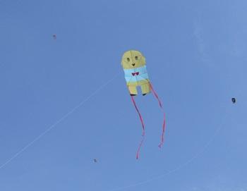 フナッシーの凧