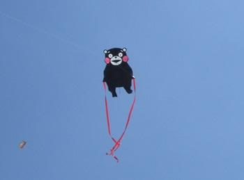 クマモンの凧