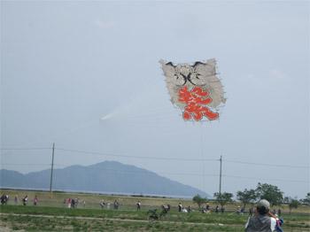 百畳の大凧の飛翔