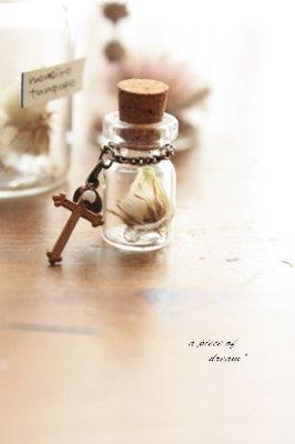 a piece of dream*