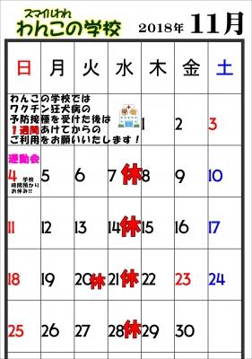 11月 画像.JPG