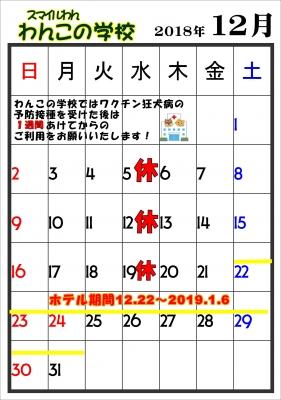 12月_01.JPG