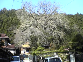 20051128_80659.jpg