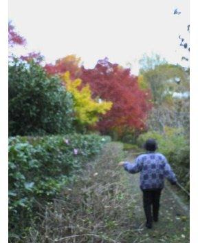 愛媛の紅葉(2008.12)