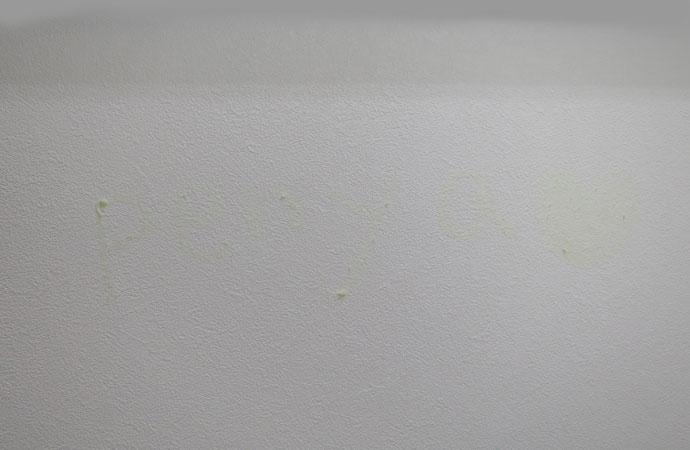 サクラクレパス 蓄光用 マーカー 壁に 書いた 後