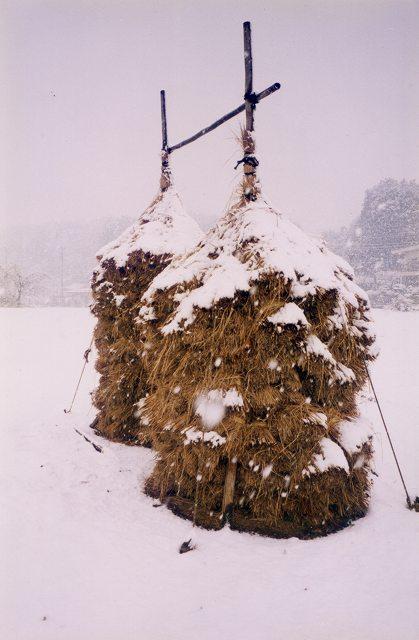 藁ぼっち(雪)