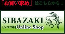 SHIBAZAKI(軽井沢彫シバザキ)on line Store