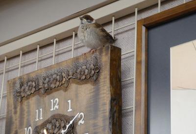 迷い込んだ雀と軽井沢彫り 時計