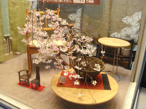 枝垂れ桜ーSHIBAZAKI(軽井沢彫シバザキ)ウィンドウ