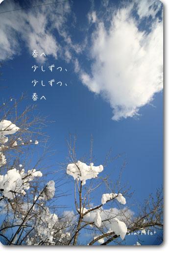 飛騨高山の冬の青空
