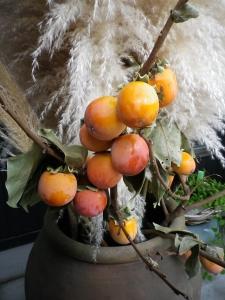 柿とパンパス