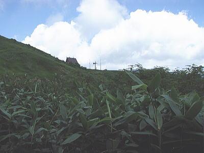 清水峠の小屋が見える