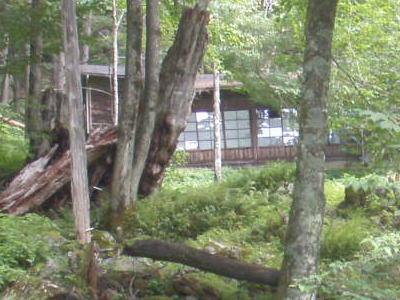 営林小屋跡