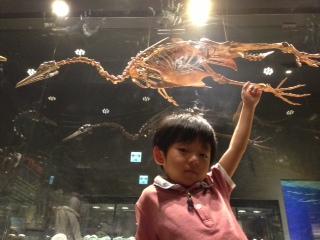 化石につかまる.JPG