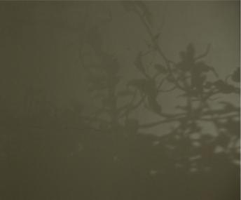 shadow_8.jpg