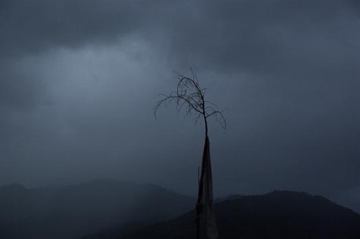 Bhutan_4.jpg