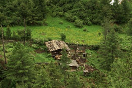 Bhutan_6.jpg