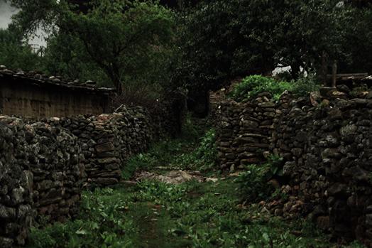Bhutan_18.jpg