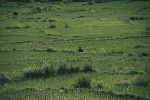 Bhutan_30.jpg