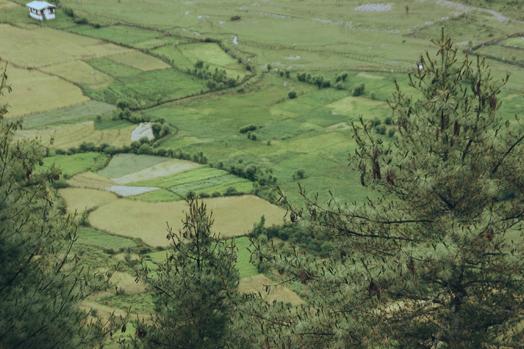 Bhutan_33.jpg