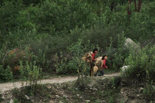 Bhutan_39.jpg