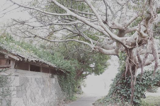 nagasaki_5.jpg