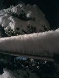 snow20001.jpg