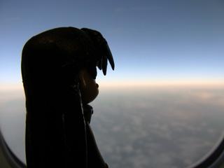 機内から日本を見下ろす麻美様