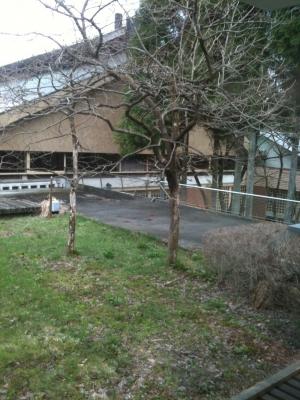 フジヤマビレッジ