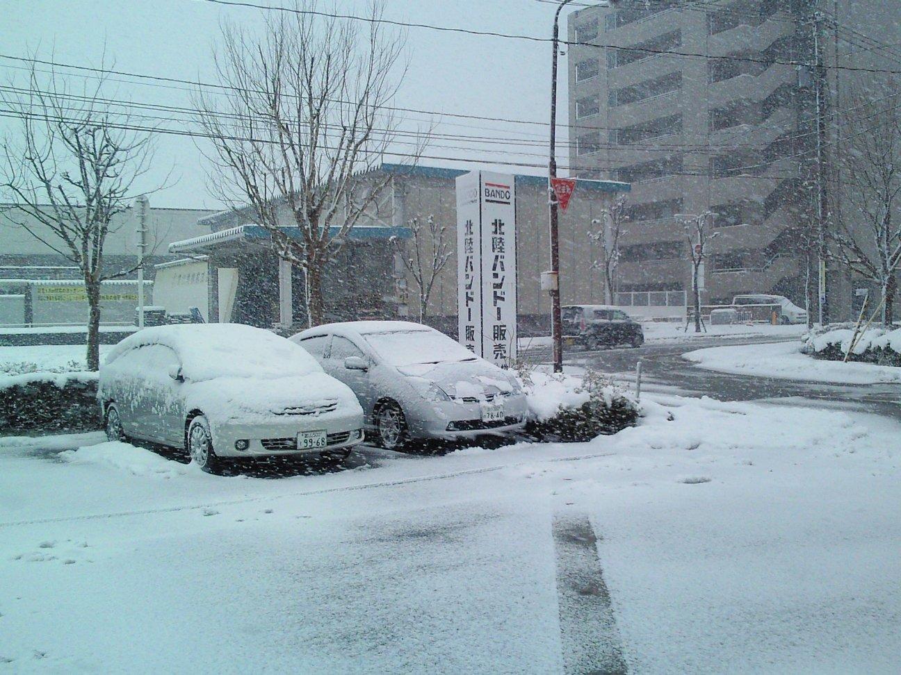 弊社駐車場の積雪状況