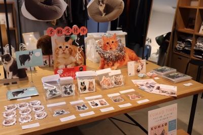 くまおの秋場所2017_171106_0029.jpg