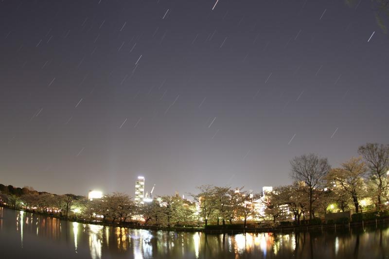 上野不忍池の桜と星空3