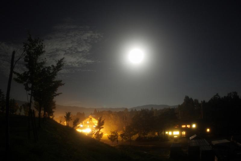 満月の白馬
