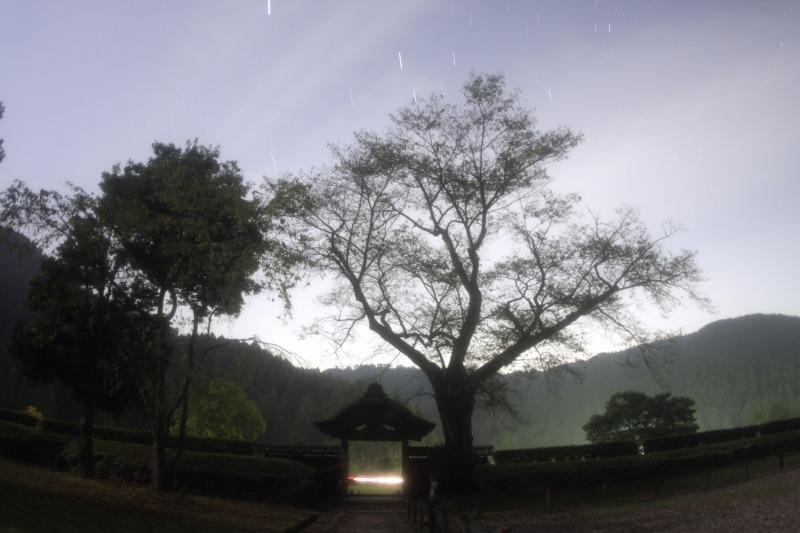 朝倉氏遺跡と星空