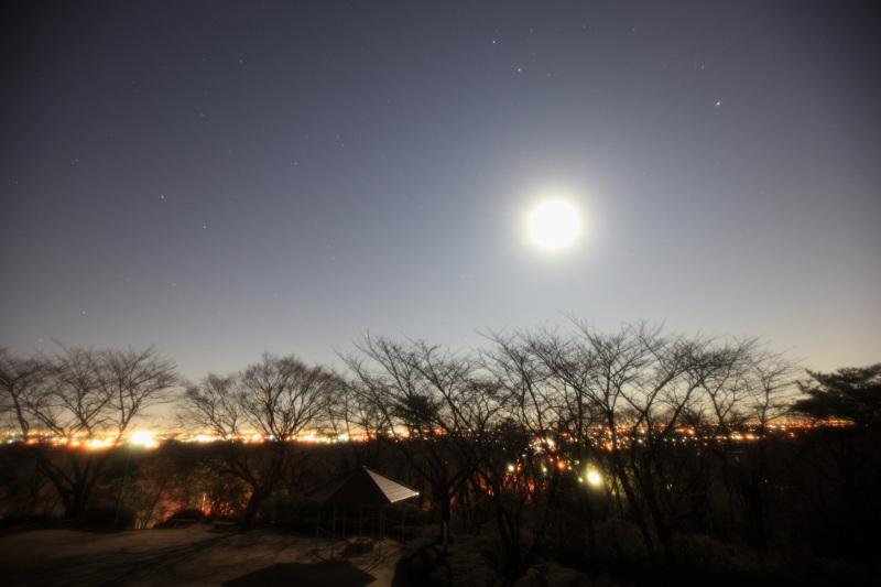 物見山展望台からの風景