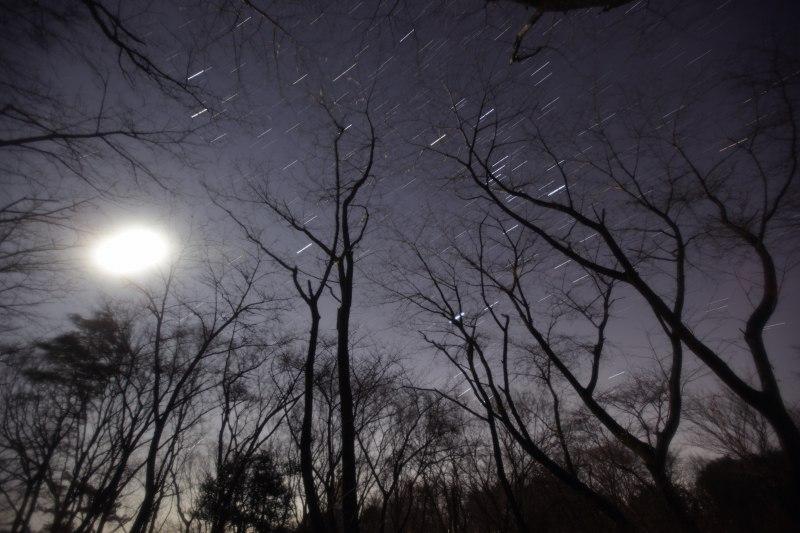 森の中からの月・オリオン・比較明