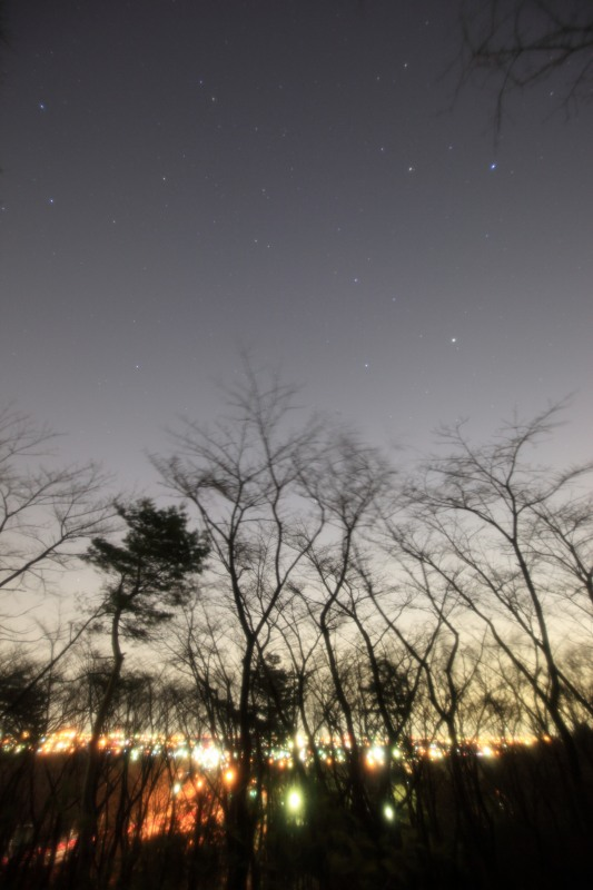 木々と夜景と昇るしし座