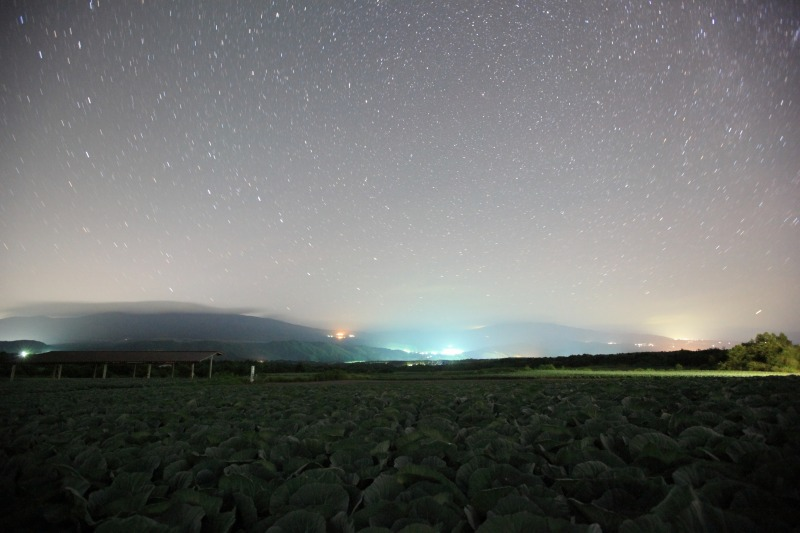 キャベツ畑と北天の星々