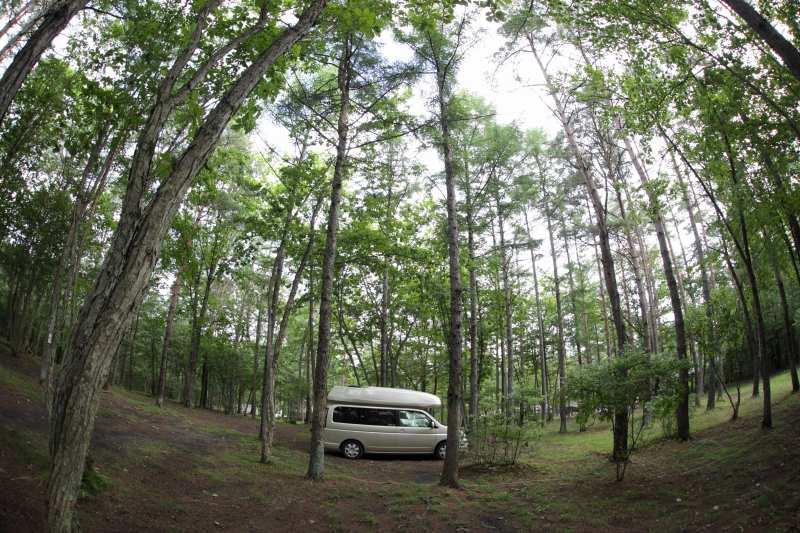 林間のキャンプサイト