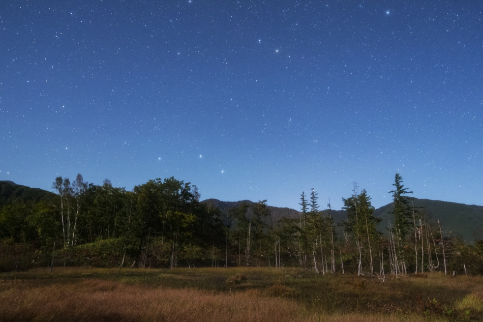 どじょう池と北天の星空