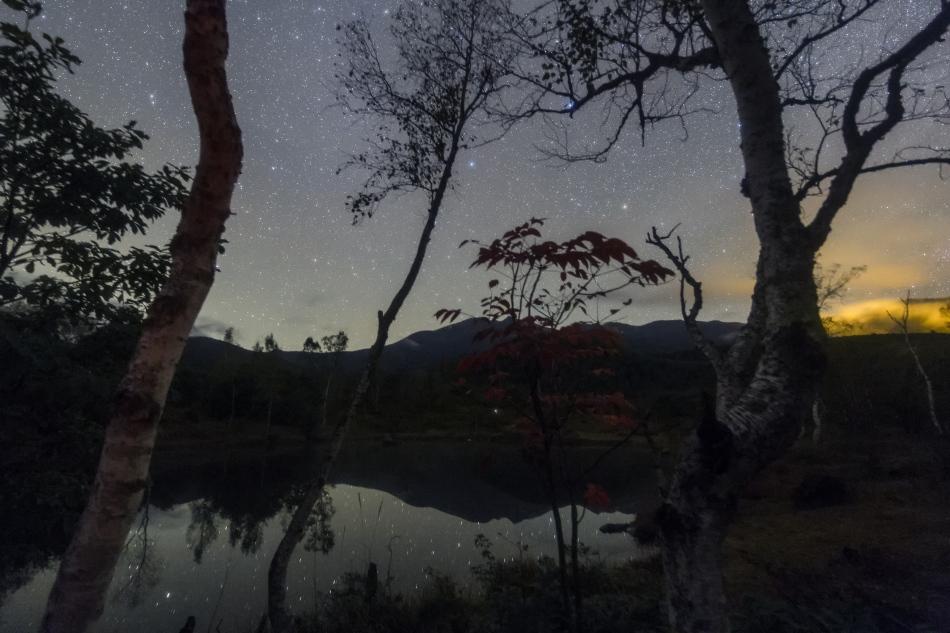 まいめの池の秋