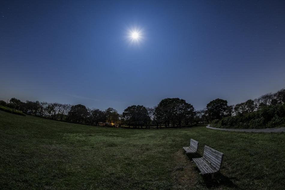 さきたま古墳群深夜のベンチと月