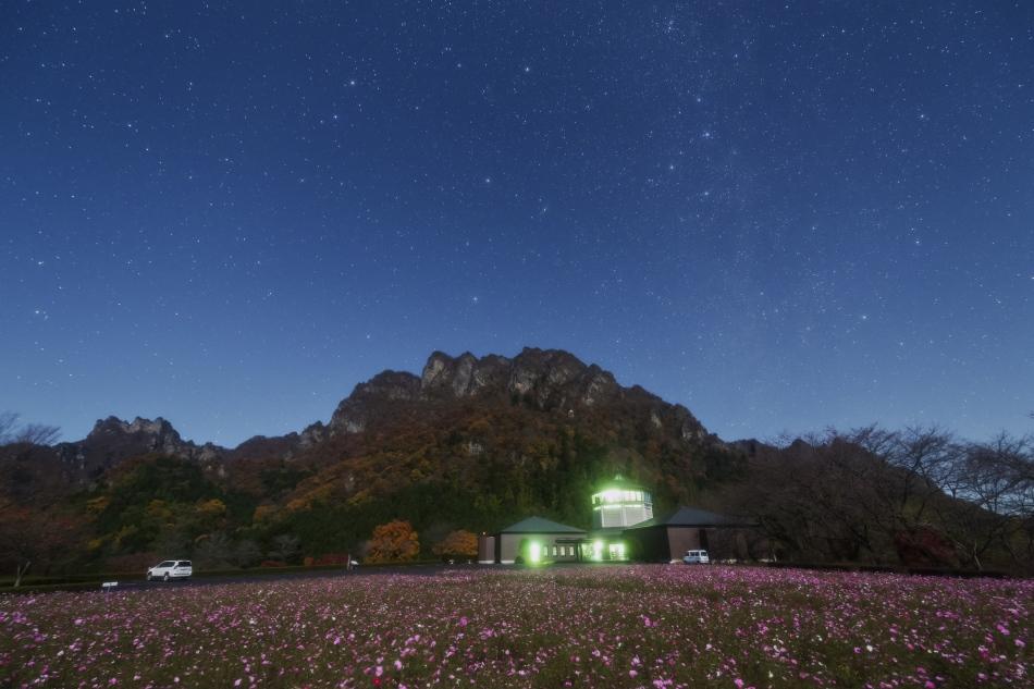 妙義山とコスモス畑・カシオペア座