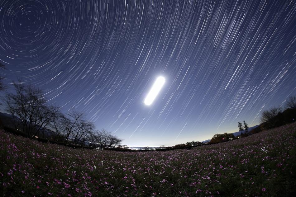 コスモス畑と昇る月・冬の星座 比較明合成