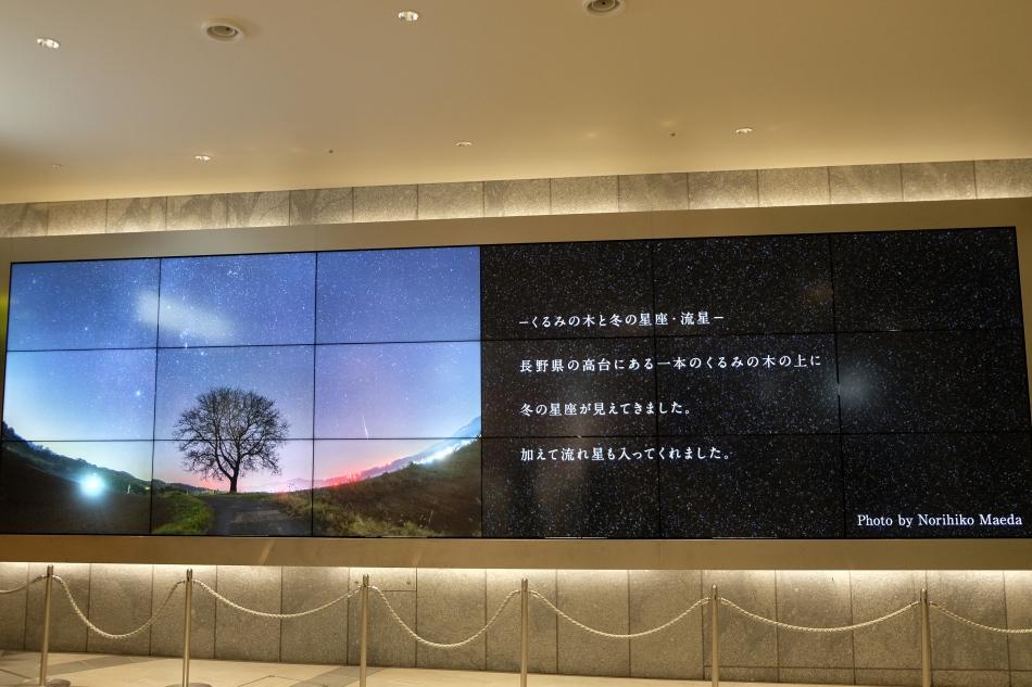 東京ガーデンテラス紀尾井町大型デジタルサイネージ